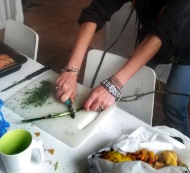 Atelier culinaire plantes sauvages comestibles ecorce de fenouil sauvage