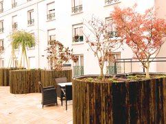 jardin therapeutique paris erable